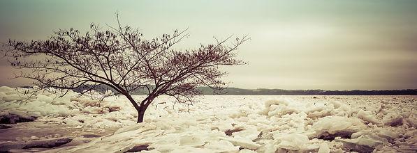 _MG_8299-Edit_Icy Glory.jpg