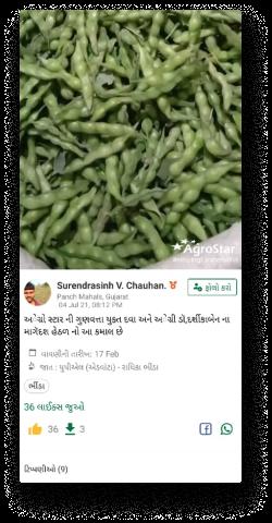 Gujarat Testimonial.png