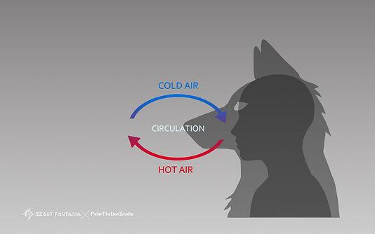 BF air circulation.jpg