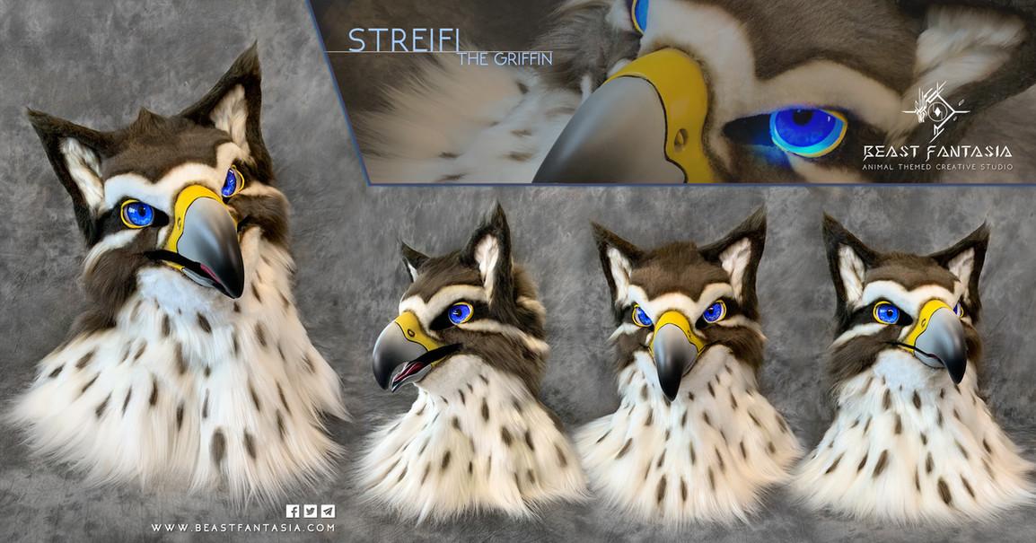 Streifi Official photos.jpg