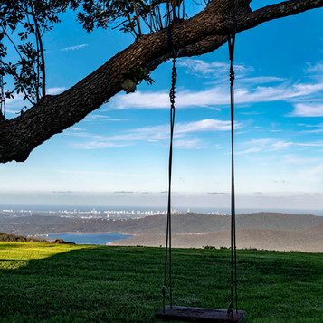 Swing with a view