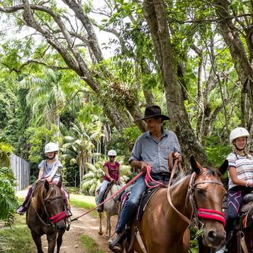 Take a trail ride