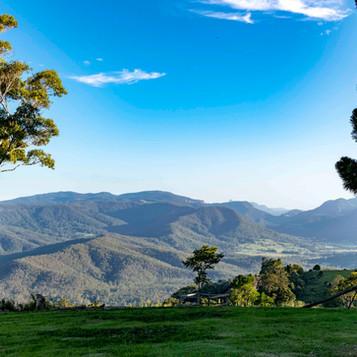 Views to Numinbah valley