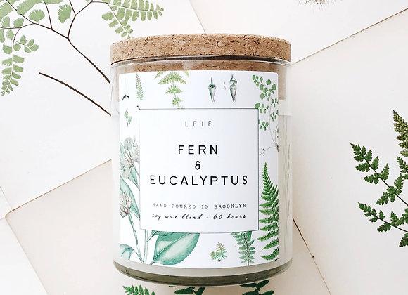LEIF Fern and Eucalyptus