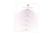 spbx - blog pdf teaser brand story (3).p