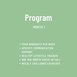 Website Month 1 Program Description