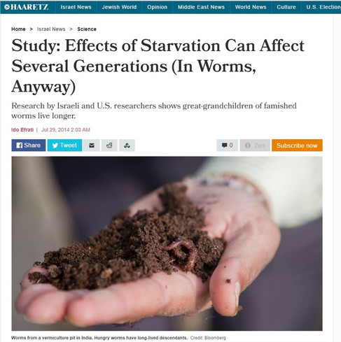 Study+Effects+of+Starvation+Can+Affect+S