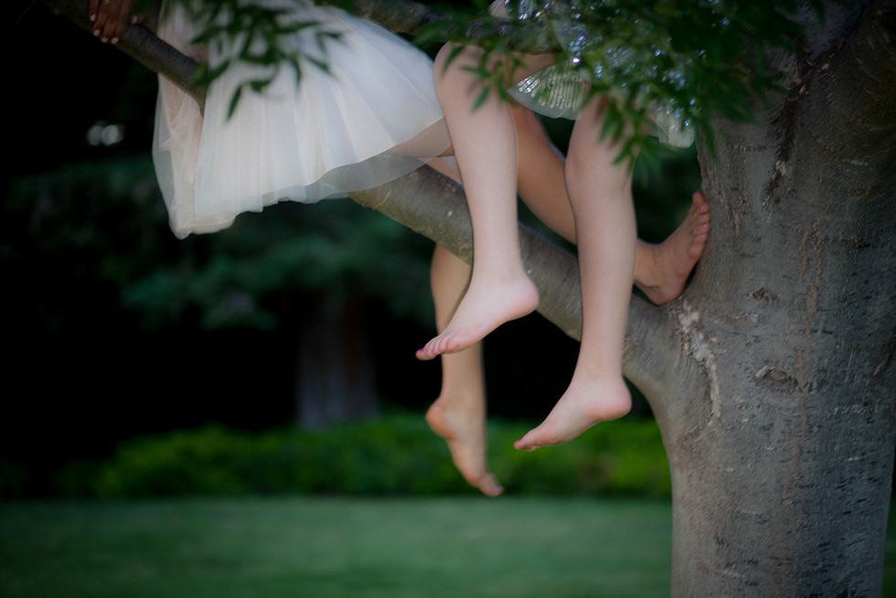 Girls on top of a tree