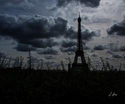 Silhoutted-Eiffel_0095