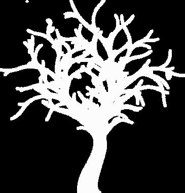 tree-2750366_1280_WhiteTree.png