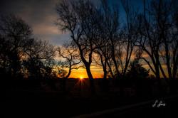 Sneaky-Sunrise_8509
