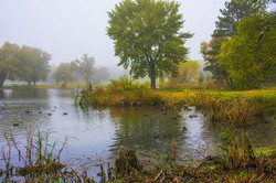Foggy-Fisherman_6462