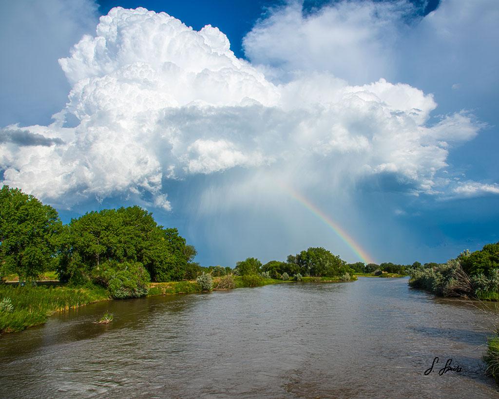 Rainbow-Stream_0002