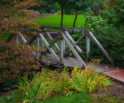 Bridge-To-Campus_6746