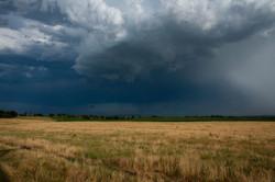 Thunder-Prairie_9974