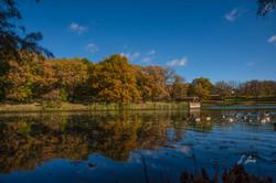 Peaceful-Pond_2363