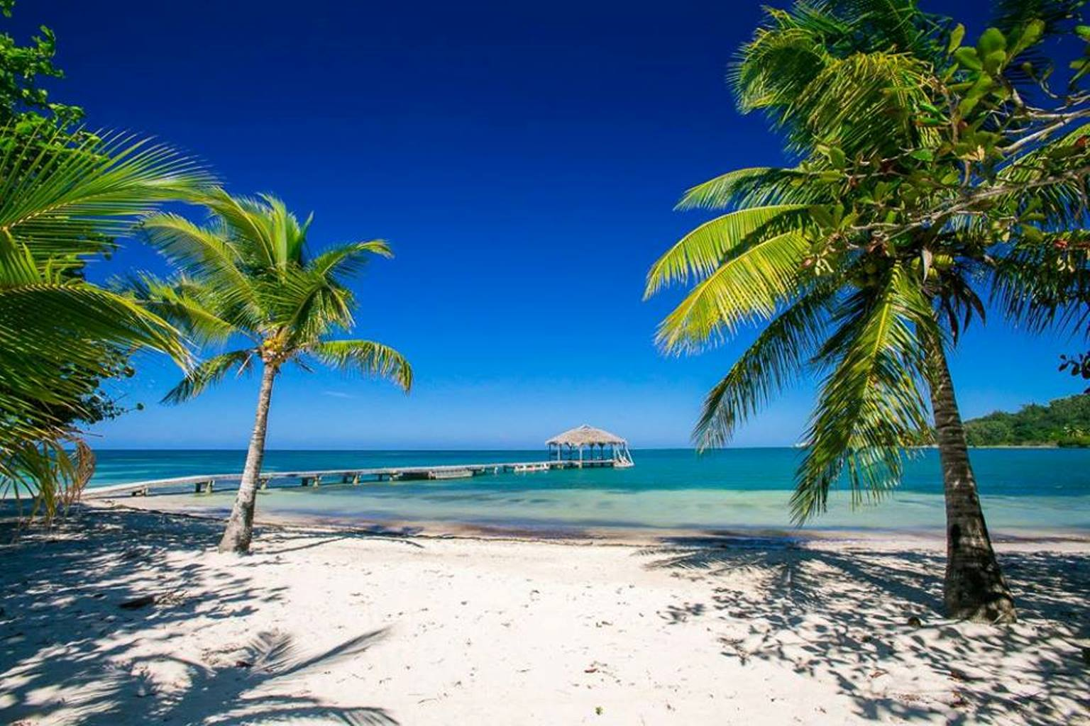 palmetto beach toward dock