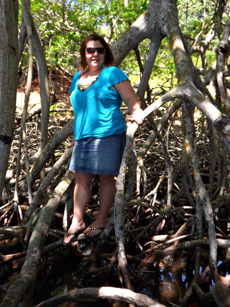 Photo Opp in Mangroves