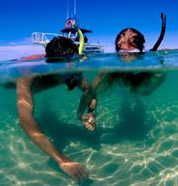 Snorkel Roatan