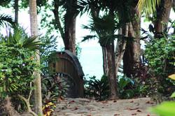 Walking trails along beach