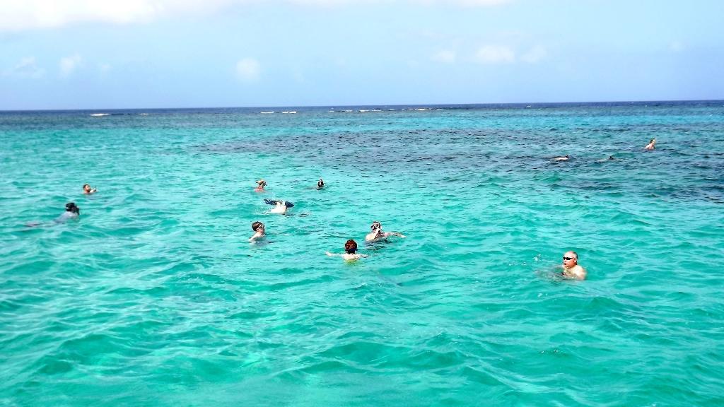Snorkel, float around, just enjoy!