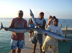 Barracuda & Wahoo
