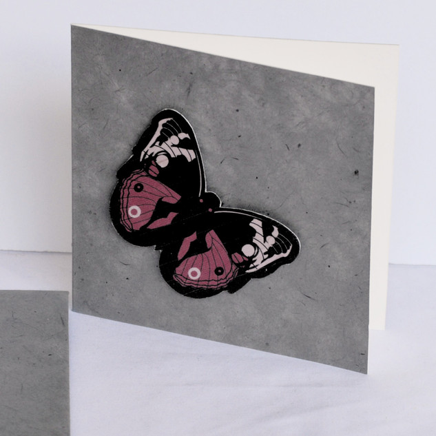 Greeting Card Butterfly_edited.jpg