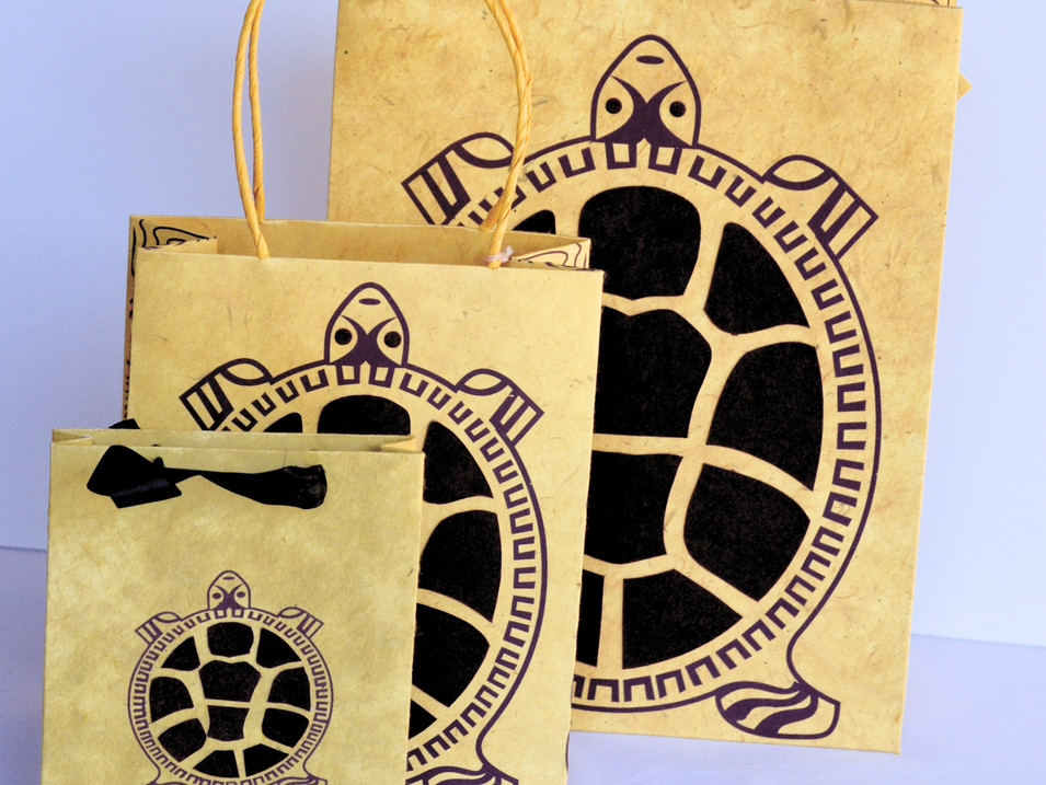 GiftBags Turtle_edited.jpg