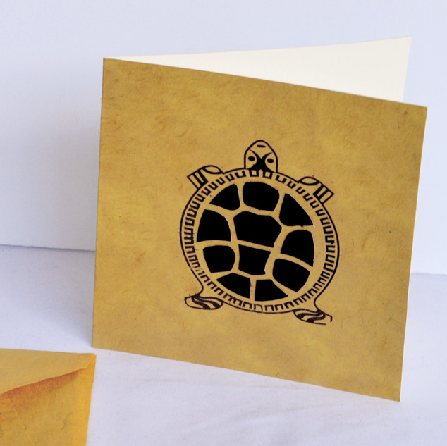Greeting Card Turtle1_edited.jpg