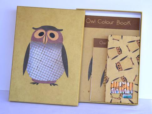 colorBook Owl_edited.jpg