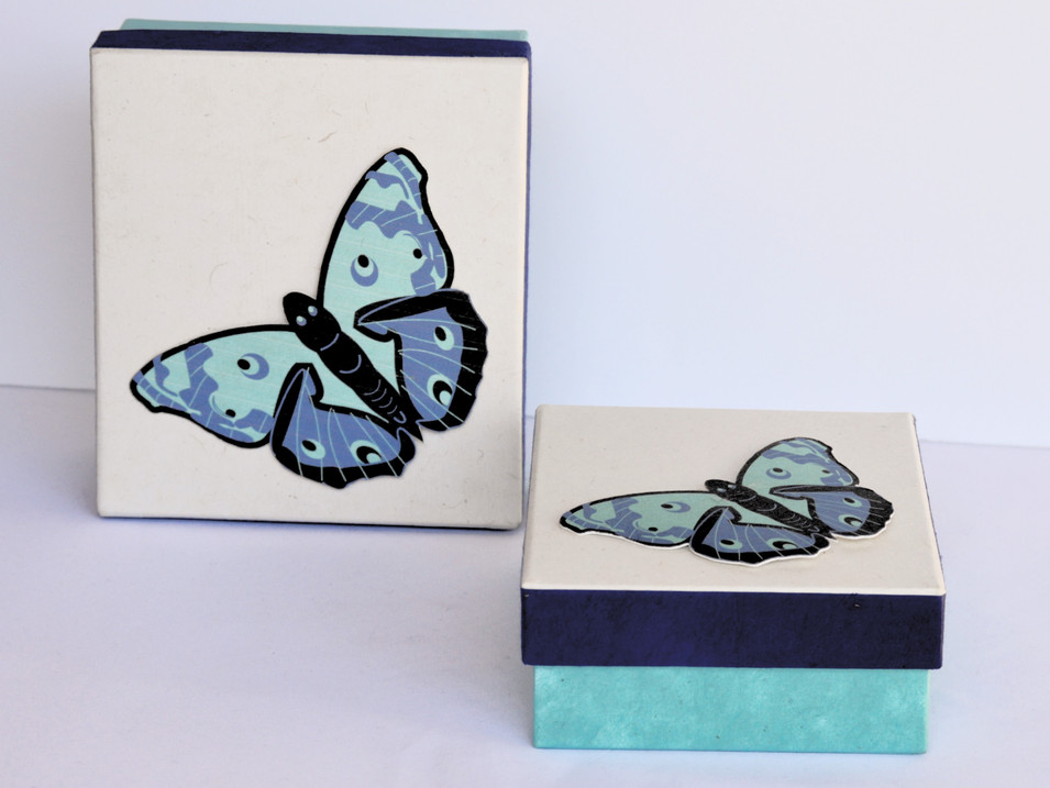 GiftBox Butterfly Blue_edited.jpg