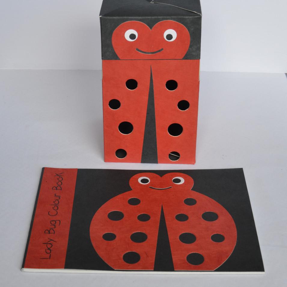 Sketchbook and flat box-ladybug.jpg