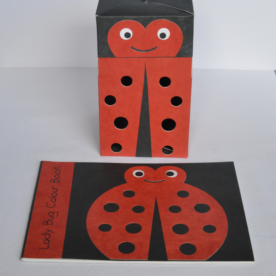 Sketchbook and flat box-ladybug.jpg