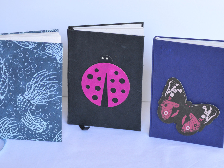 Notebook Medium Butterfly Jellyfish Lady
