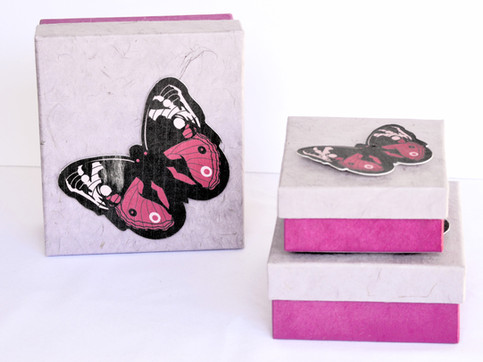 GiftBox Butterfly Pink1_edited.jpg