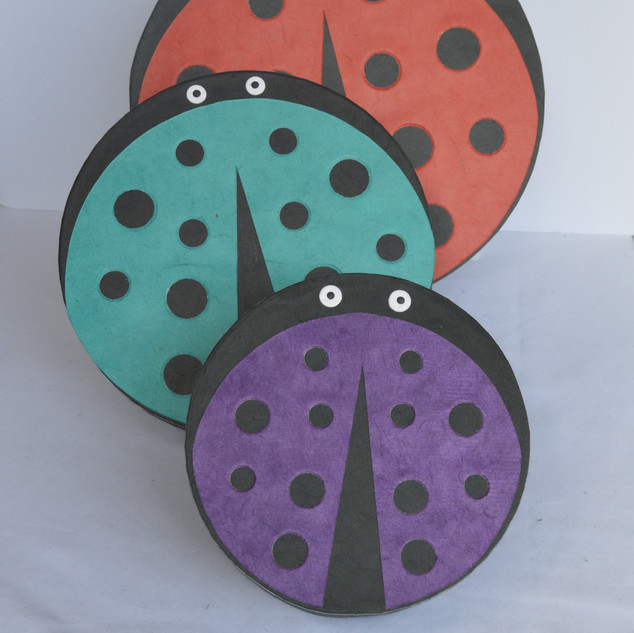 Boxes Lady Birds