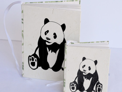 Notebooks Panda