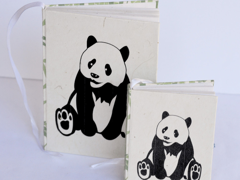 Notebooks Panda