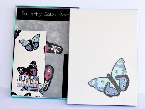 Color Book Butterfly_edited.jpg