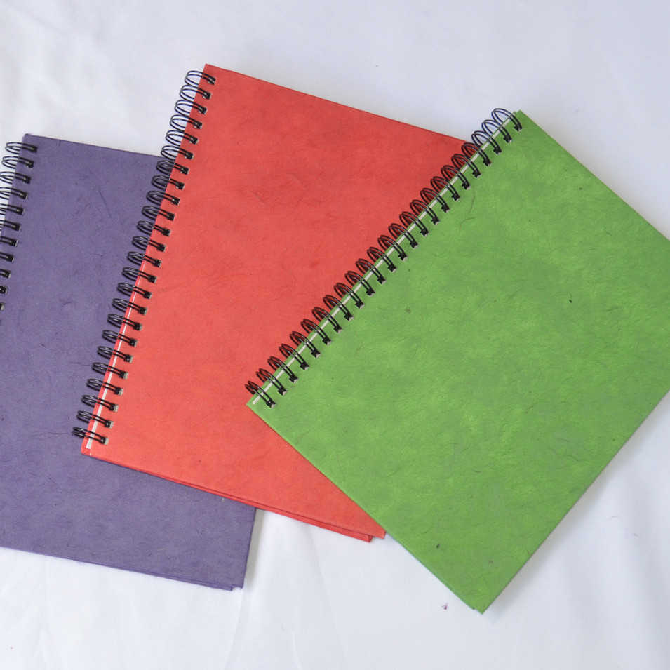 Notebooks Three Colors.jpg
