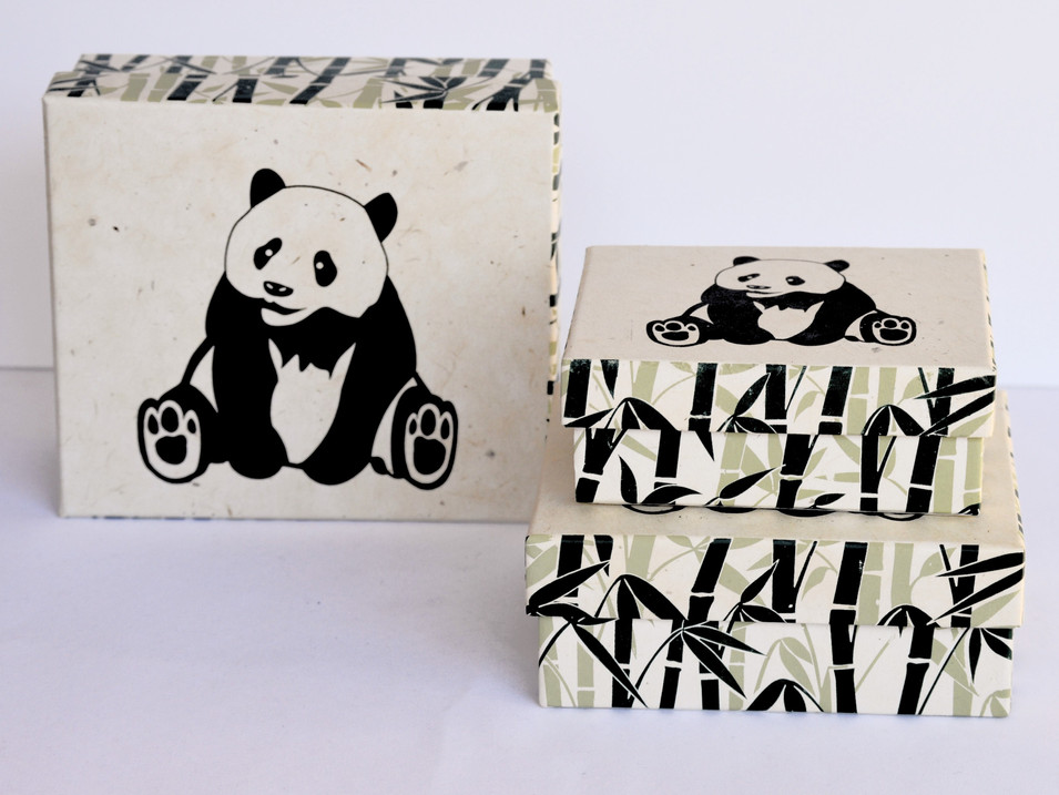 GiftBox PandA_edited.jpg