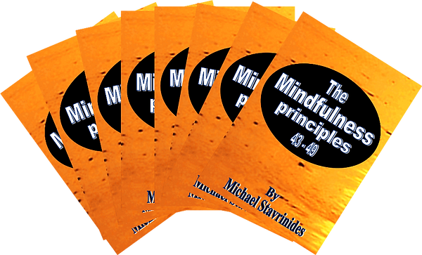 The Mindfulness Principles books By Mich