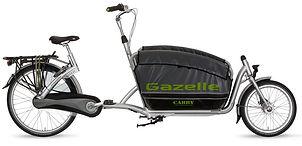Gazelle Cabby.jpg