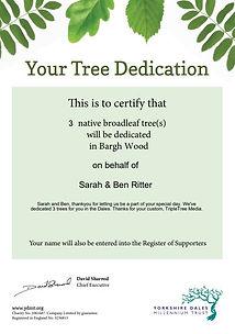 sarah and ben tree.JPG