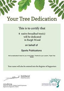 sports pub tree.JPG