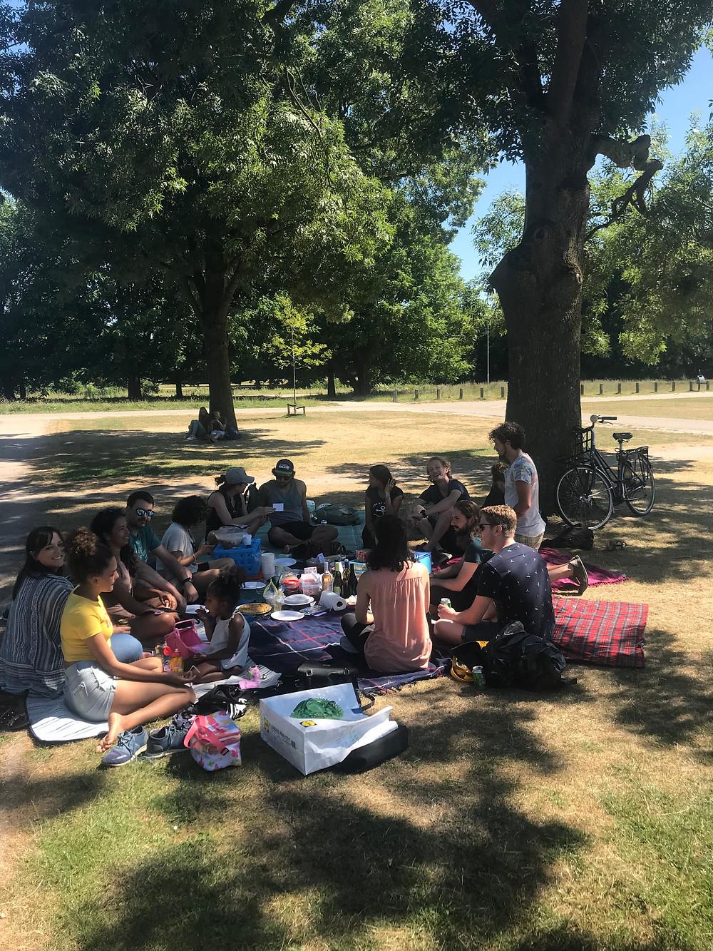 picnic, wezenlandenpark, zwolle, park, summer days, food, friends, expat life, expats