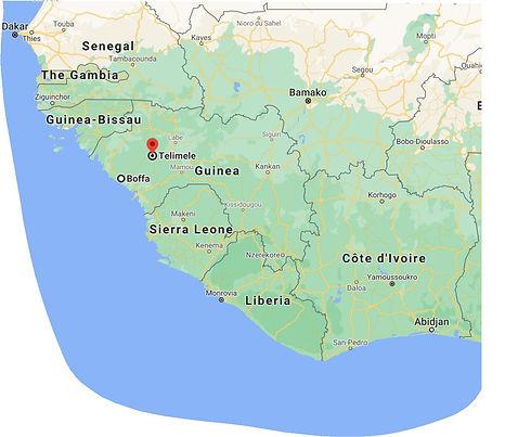 Guinea telimele.jpg