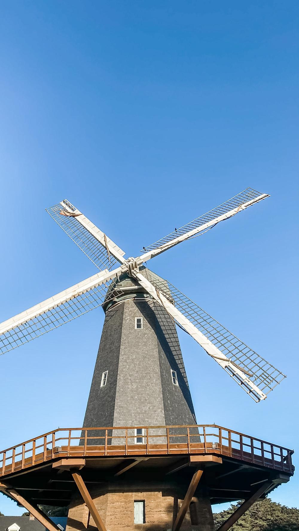 Murhpy Windmill in Golden Gate Park, San Francisco