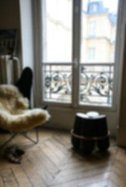 Parisian apprtment La Chance