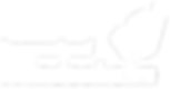 Windesheim_logo_DIAP-DEF.png